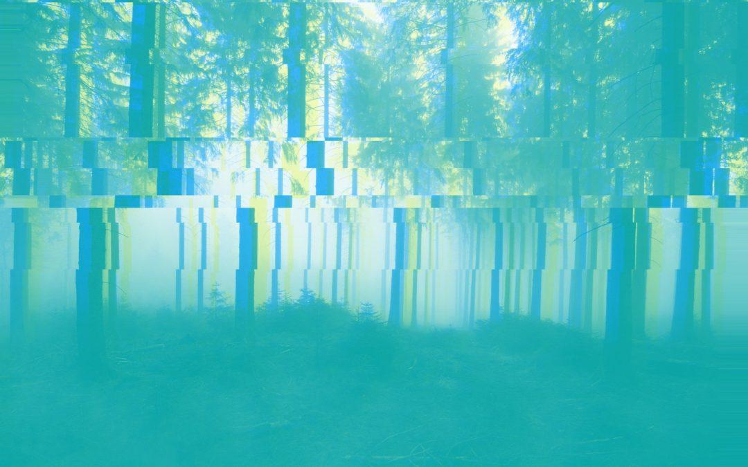 """Konferenz Bits & Bäume 11/2018: """"Jenseits digitaler Kurzsichtigkeit"""""""